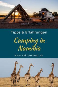 Survival camping tips Camping Glamping, Camping Hacks, Roadtrip, Van Life, Trekking, National Parks, Survival, Africa, Journey