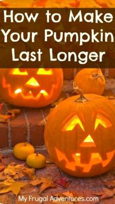 Easy Tips to Make Your Pumpkin Last Longer!!