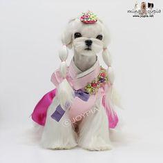 Korean princess