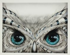 'Owl' by Darrell Driver