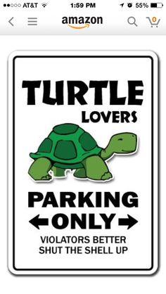 Turtle parking