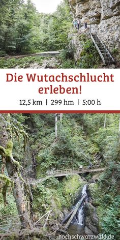 Wutachschlucht - hiking and biking - tours through the Wutachschlucht - Attention outdoor lovers! A trip to the Wutach Gorge is an unforgettable hiking experience for the - Camping And Hiking, Hiking Trails, Hiking Tours, Camping Hacks, Excursion, Colorado Hiking, Plein Air, Highlands, Outdoor Travel