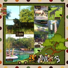 zoo layout... love how some photos are in multiple photo wells