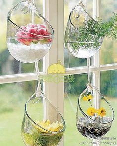love these glass bowls for a window garden - bjl