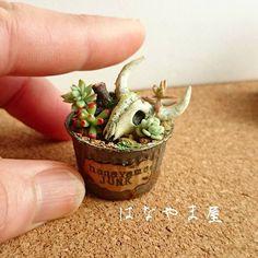 ☁ #ミンネで販売  本日21時より#ジャンク な 錆び器に水牛風の骨と #多肉植物 の寄せ植えです。  ただいま展示中です。  さむーい (*´>д<) #ミニチュア#ミニチュア雑貨 #粘土多肉#樹脂粘土 #ハンドメイド#てづくり #miniature#handmade #claysucculents#clayart  #minne