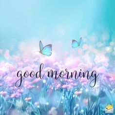 Good Morning Messages: If you like to share Good Morning with your family, relatives, lover & friends. Find out unique collections of Good Morning Msg, best good morning messages for friends in Hindi, morning love messages. Good Morning Friday, Good Morning Happy, Good Morning Sunshine, Good Morning Messages, Good Morning Wishes, Goog Morning, Friday Morning Quotes, Funny Morning, Good Morning Prayer
