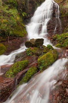 Afluente del río Pas #Cantabria #Spain