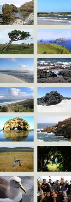 Information about The Chatham Islands, New Zealand