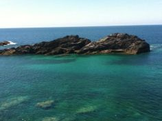 The colour of the sea was spectacular on this walk from Bedruthen Steps to Porthcothan Beach.