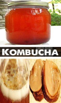 Kombucha Nutrition Facts & Benefits