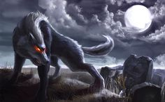 Wolf Moon tonight | Angry wolf wallpaper #30837