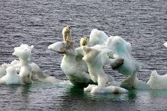 ¿Sabías que? la temperatura global y el nivel de los mares aumentaron de forma más acelerada,durante el último siglo.