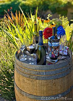 Google Image Result for http://www.dreamstime.com/fun-backyard-party-thumb3043993.jpg
