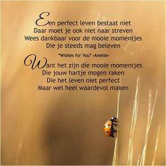 Een perfect leven bestaat niet ...