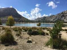 Rund um den Cuber-Stausee Strand, Mountains, Nature, Travel, Recovery, Majorca, Landscape, Naturaleza, Viajes