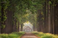 "Good Morning! - Good Morning!, the Netherlands.  <a href=""http://facebook.com/martinpodtphotography"">Facebook</a> | <a href=""https://www.instagram.com/martinpodt/"">Instagram</a> | <a href=""http://fineartamerica.com/profiles/martin-podt.html"">Fine Art America</a>"