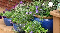 Collection of blue garden pots