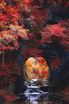 Most Magical Landscape and Nature Photos - Beautiful World, Beautiful Places, Beautiful Pictures, Fall Pictures, Nature Pictures, Landscape Photography, Nature Photography, Photography Photos, Autumn Scenes