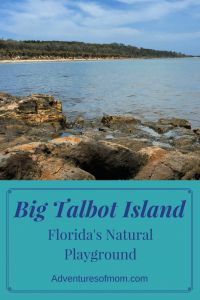 Scramble up rocks, explore tidal pools and dodge giant driftwood at Big Talbot Island State Park, on one of Florida's last wild barrier islands. Florida City, Natural Playground, Island Design, Sunshine State, Canada Travel, Island Life, Night Life, State Parks, Travel Destinations