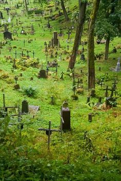 Very old cemeteries are so intriguing. This one looks beautiful. (The only place in the world to find enduring peace: a cemetary) Cemetery Headstones, Old Cemeteries, Cemetery Art, Graveyards, Cemetery Monuments, Highgate Cemetery, Haunted Places, Abandoned Places, Belle Photo