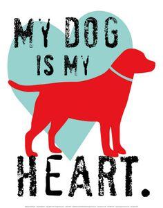 my dog is my heart.
