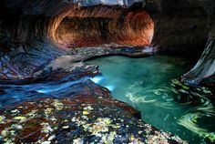 Tunnel of Color, Zion National Park