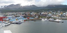 Photo Gallery | Australis - Expedition Cruises