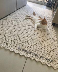 ingau se acha dono do tapete 😅😍 . Crochet Doily Rug, Crochet Rug Patterns, Crochet Carpet, Crochet Cushions, Crochet Home, Filet Crochet, Crochet Designs, Crochet Shawl, Rag Rug Tutorial