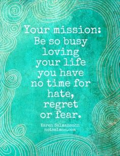Your mission: Be so busy loving your life you have no time for hate, regret, or fear. -Karen Salmansohn