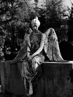 angel (500×670)