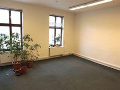 K pronájmu: Prostorná kancelář (30 m2) v centru Nového Jičína - www.shelbyreality.cz
