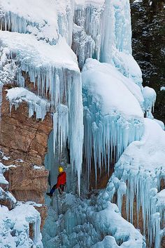 Ice Climber | by Guy Schmickle Box Canyon Falls Ouray CO