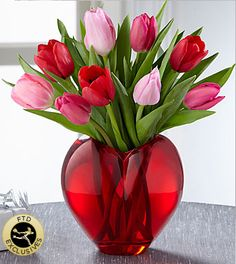 Valentine's Day Flowers & Gifts - Season of Love Bouquet - The Season of Love Bouquet takes a springtime approach to declaring your Valentine's Day love. Red and pink tulips make an early, out-of-season appearance simply and elegantly arranged in a sculptural, heart-shaped vase of vibrant, ruby-colored glass. What a way to sweep that special someone, off their feet!