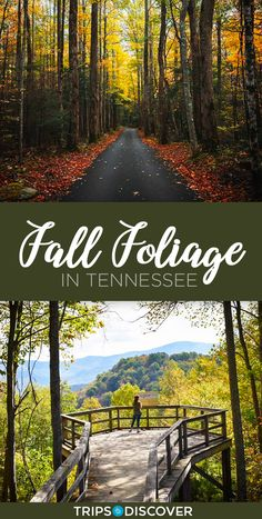 Embrace the season with these 8 Tennessee points known for their fall foliage - Destination vacances été 2019 Fall Vacations, Mountain Vacations, Vacation Places, Vacation Trips, Dream Vacations, Places To Travel, Places To Go, Vacation Ideas, Travel Destinations