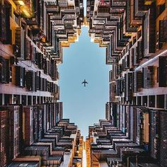 Find a new point of view ⬆️ Photo by @timwah