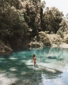 Booloumba Creek Camping - Secluded Turquoise Pools In The Jungle Best Swimming, Swimming Holes, Brisbane City, The Perfect Getaway, Turquoise Water, Stay The Night, Sunshine Coast, Australia Travel, Beautiful Beaches