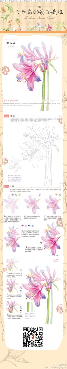 Duitang.com - 飞乐鸟教程
