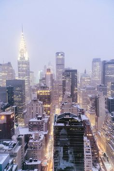 New York City Skyline in the Snow— (by Vivienne Gucwa)