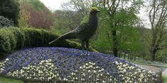 3D Carpet Bedding Spring Pheasant near the Aviary.  ©National Trust, Waddesdon Manor  England ...  Amazing...
