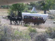 Historic Trails West Day Tours: Ride into the Camp on the banks of the N. Casper Wyoming, Day Tours, Banks, Trail, Camping, Horses, River, Animals, Campsite