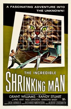 Film Noir, Classic Film, Classic Hollywood, Crime Films, Movie Posters, Graphic Design, Academy Awards, Mid-century Modern.