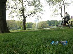 wij willen net zoals de Park Transwijk in Utrecht veel groen in de wijk