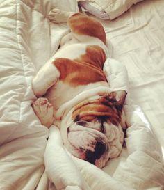 a sleepy baby