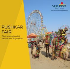 The #PushkarFair is the most significant livestock fairs and cultural fiesta in #Rajasthan. Speculated during the months of October and November every year, it drags the attention of national and international craft lovers - reaching up to 400,000 in count within a few days.  Here, you can find the world of decorated camels, an abundance of delicacies, exquisite handicraft, and competitions.   #India #Pushkar #IncredibleIndia