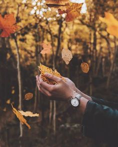 Happy first day of Fall! Celebrating with @cluse jewelry, get 15% off your order with code RUSTICBONES15 Can't wait to see what this season brings #CLUSE #clusewatches #FallForCluse