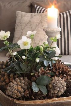 Use s winter booming plant like a hellebore, pine cones and battery lights if you have them as a centerpiece or focal point. Transplant them to a pot or your yard later.