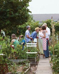 *** Community Garden Potluck Party gallery