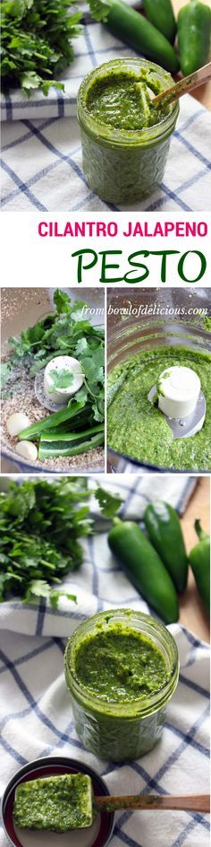 This cilantro jalapeno pesto is fresh, spicy, flavorful, earthy & healthy. Cilantro Recipes, Jalapeno Recipes, Cilantro Pesto, Cilantro Sauce, Mexican Food Recipes, Vegetarian Recipes, Cooking Recipes, Healthy Recipes, Chutneys