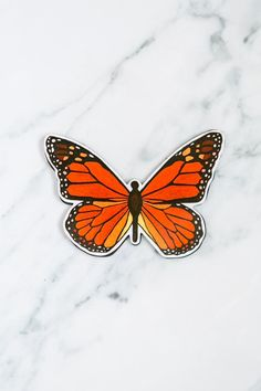 If you love butterflies, then you are sure to love butterfly screen door magnets.#windowfilmworld #windowfilm #screendoormagnet #homedecor Film World, Screen Material, Window Film, Monarch Butterfly, Print Design, Doors, Butterflies, Butterfly, Gate