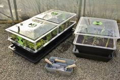 Save up to on Self-Watering Salad & Veg Planters with Mini Greenhouses. Mini Greenhouse, Self Watering, Vegetable Salad, Grow Your Own, Planters, Greenhouses, Courtyards, Green Houses, Glass House